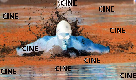 natacion1