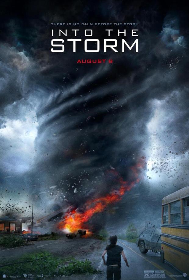 intothestorm-poster