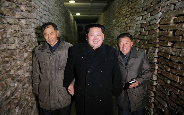kim-wall-of-fish_3507788k